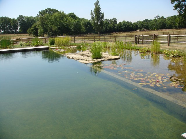 Anglo swimming ponds review our portfolio for Garden pond kent